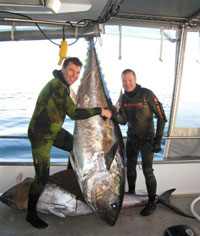 Rob and Rod Seddon and his 240 kg Bluefin Tuna