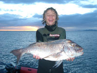 Jake Morris-Torelli and a great NZ Snapper